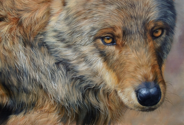 wildlife art,wildlife artist,animal paintings,wildlife artists