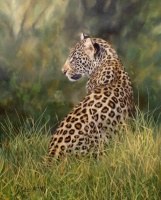 leopard big cats paintings